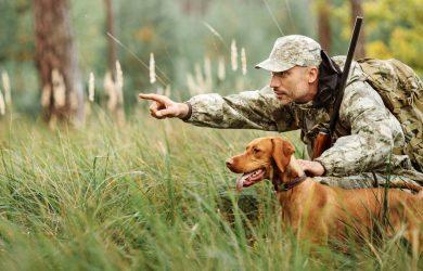 Κυνηγετικό έτος 2020-2021. Ποια θηράματα επιτρέπονται και ποσότητα ανά κυνηγό